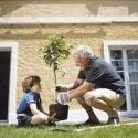 Babalar Bahçıvan Oluyor
