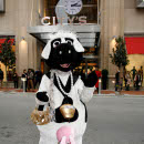 City's Nişantaşı'na Gelen İlk `inek` Kim?