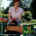 Yeşermeyi bekleyen bitkilerinizi Compo ürünleri ile yaza hazırlayın