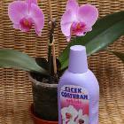 Çiçek Coşturan ile Orkideler Aşkınız Kadar Ölümsüz