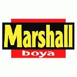 Marshall'dan Temizlik Devrimi: Gümüş İyonlu Hijyen