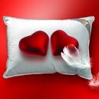 Penelope'den bir yastıkla Aşkınızı alevlendirin