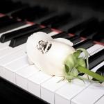 Speaking Roses® Şimdi Türkiye'de