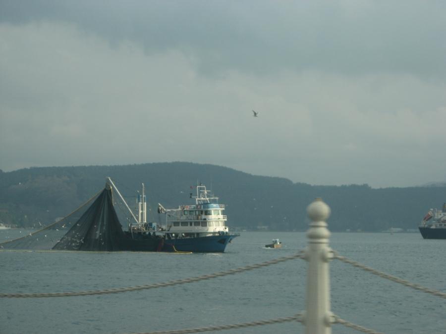 Boğazda Balıkçı Teknesi - Dinçer Önel