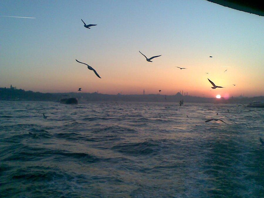 Günbatımı - Faruk Özer