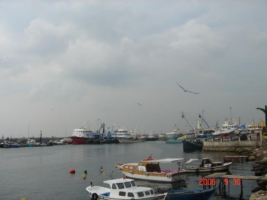 Kumkapı - Baisee Şendemir