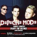 Depeche Mode Tribute (Denmark)
