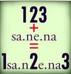 123+sa.ne.na=1sa.n2e.na3