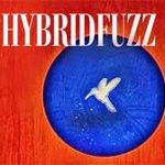 HybridFuzz