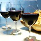 Doluca Şarap Eğitim Programı