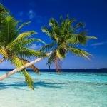 5. Yılını Kutlayan Etihad Guest'in Bir Şanslı Üyesi Maldivler'e İki Kişilik Tatil Kazanacak!
