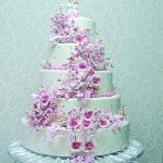 Düğün Töreninizin En Tatlı Anı