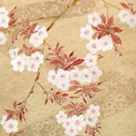 Osmanlı Bahçesinde Japon Çiçekleri