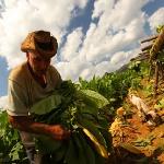 Cem Canbay - `Doğudan Batıya 30 Günde Küba` Sergisi
