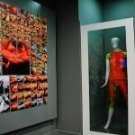 Maksut Aşkar - Edible Art / Yenilebilir Sanat Sergisi