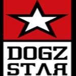 Memo Film Sunar: Dogzstar'da Kült Salılar
