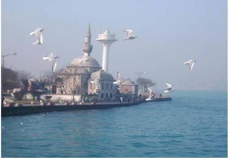 İstanbul - Behiye Taşkıran