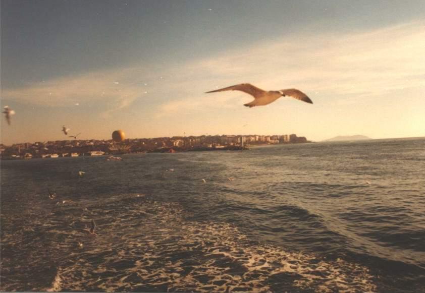 Vapurdan Kadıköy - Hasan Aksoy