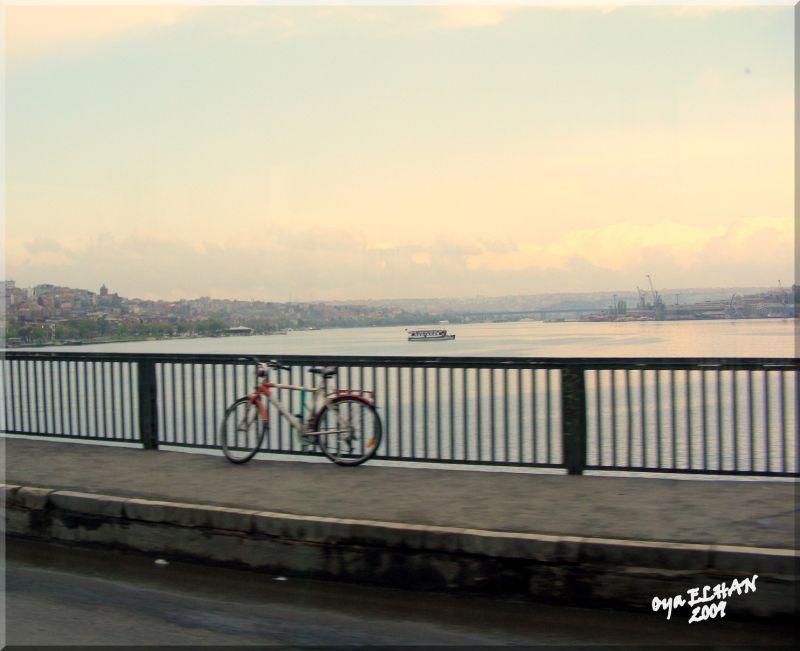 Köprüden İstanbul - Oya Elhan