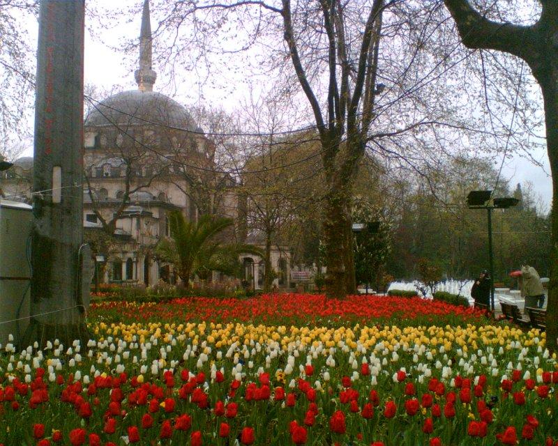 Eyüp Sultan Cami - Halide Dursun