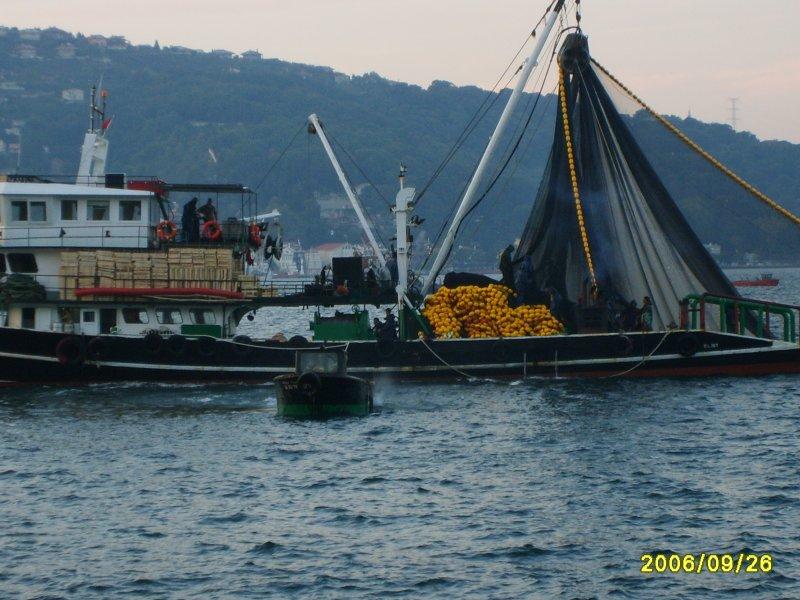 Tarabya`da Balıkçılar - Mustafa Köşker