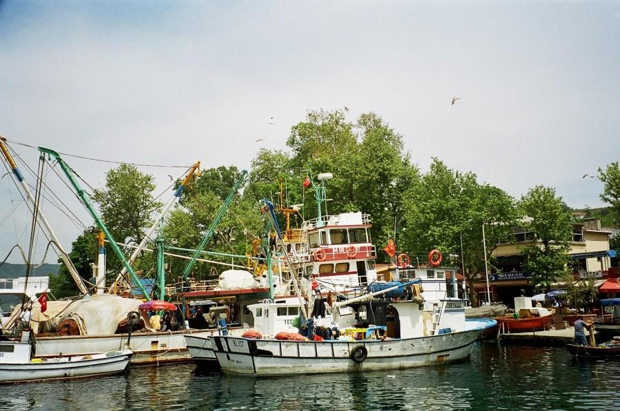 Anadolu Kavağı - Nurten