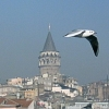 Galata Kulesi - Buket Efe