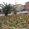 İstanbul`da Bahar - Cabir Yıldız