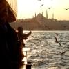 Vapurdan İstanbul - Emre Şahin