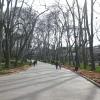 Gülhane Parkı - Hande Urgancıoğlu