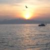 Boğaz`da Gün Batımı - Selda Günyak