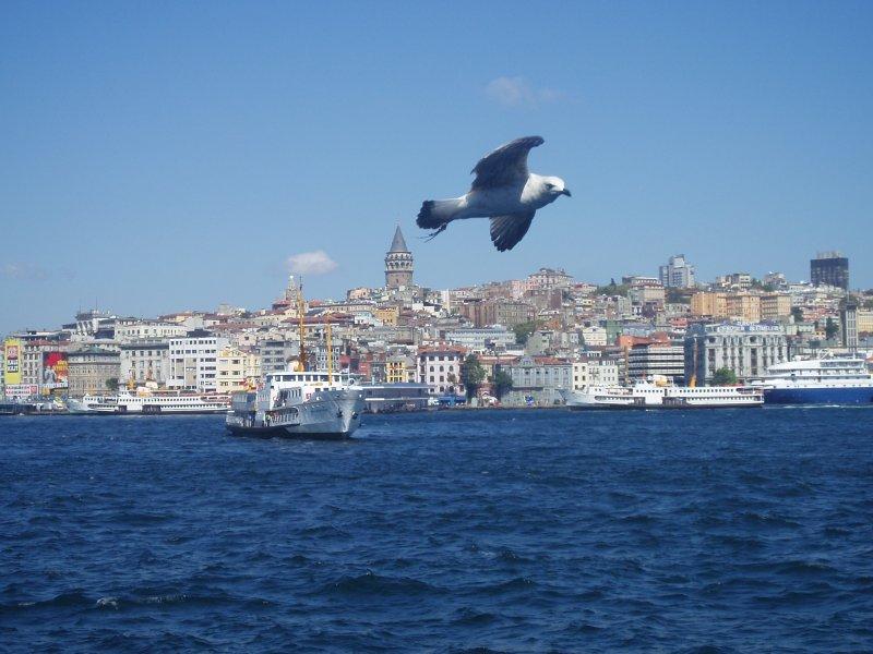 Vapurdan Karaköy & Galata - Rıza Eker