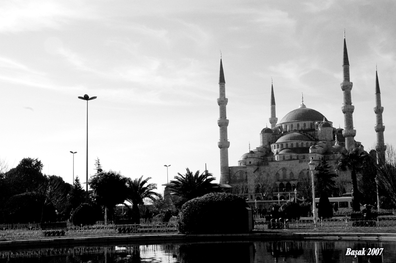 Sultanahmet - Başak Delibaşı
