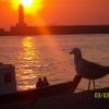 Kadıköy`de Gün Batımı - Ceyhun Gökalp