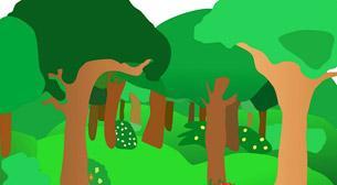 Ormanda Neler Oluyor