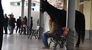 Kara At Hatıraları