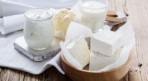 Artisan Peynir Atölyesi