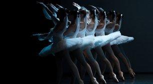 Balenin Genç Yetenekleri