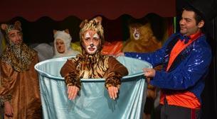 Sirk Kedileri