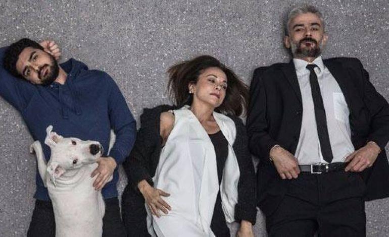 Köpeklerin İsyan Günü