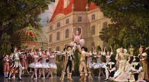 St. Petersburg Bale Tiyatrosu-Uyuya