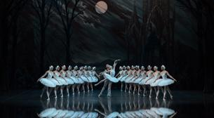 St. Petersburg Bale Tiyatrosu-Kuğu