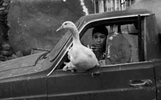 Timurtaş Onan Fotoğraf Sergisi
