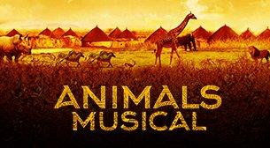 Animals Musical