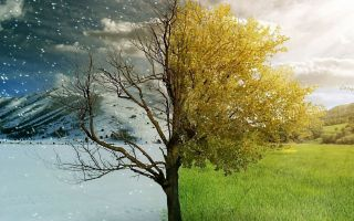 Mevsimler Geçerken…