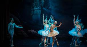 Moscow State Ballet Kuğu Gölü