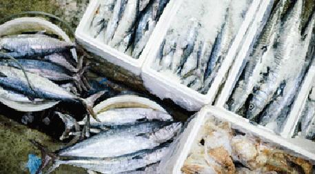 Balık Pazarı III
