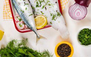 Dülger Balığı ve Pirpirim Otu Lacivert'te