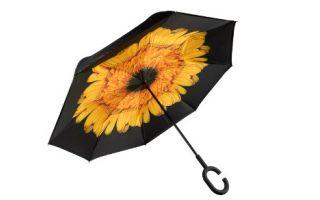 Mutluluk Yağmurları Altında Şemsiyesiz Kalmayın