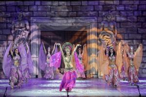 Anadolu Ateşi Troya Dans Gösterisi
